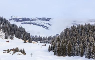 Ski Resort Laax. Switzerland