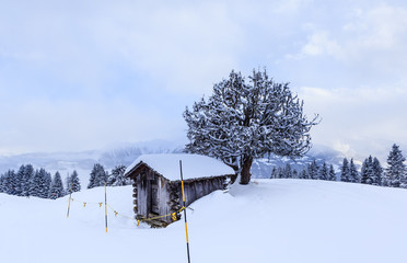Shed in the mountains. Ski Resort Laax. Switzerland