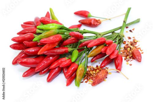 Chili Bilder chili bund stockfotos und lizenzfreie bilder auf fotolia com bild