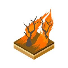 Forest fire icon in cartoon style on a white background vector illustration