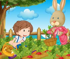 Deurstickers Boerderij Kid and bunny picking out vegetables