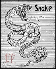 Engraved illustration of zodiac symbol with snake and lettering