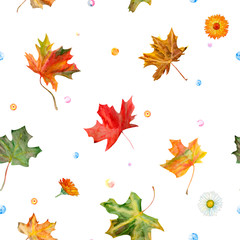 Watercolor seamless pattern with colorful autumn maple leaves and flowers chamomile, calendula, on vintage background, botanical painting, vintage style