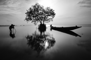 Tree with shiny black with white photography reflection of trees and boat, Thailand.