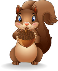 Cartoon funny squirrel holding pinecone
