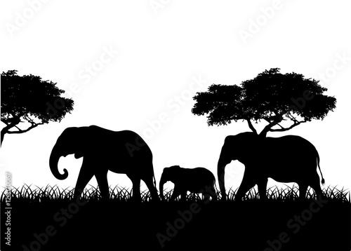 Elephant family silhouette