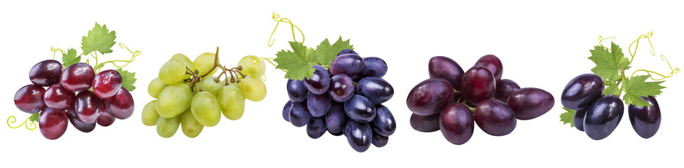 Collection of grapes isolated on white