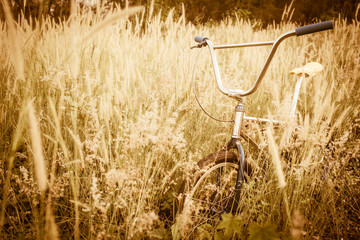 Bicycle in Summer grass field classic bicycle,old bicycle style.