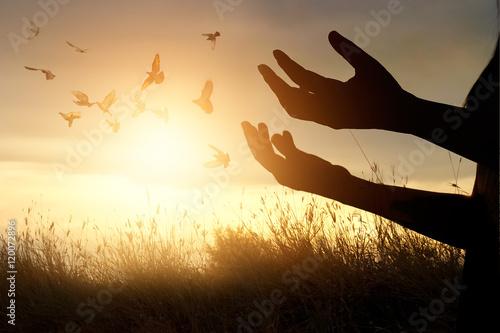 Leinwandbilder Woman praying and free bird enjoying nature on sunset background