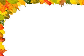Hintergrund mi verschiedenen Herbstbättern