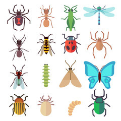 Insect vector flat icons set