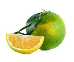Citrus medica Linn on white background