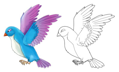 Cartoon exotic colorful bird - flying - isolated - with coloring page - illustration for children