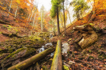 Wild autumn mountain forest with waterfall, nature colorful background. National park Slovak paradise, Slovakia