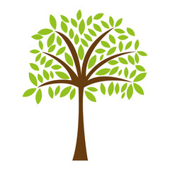 tree plant natural isolated icon vector illustration design