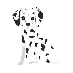 dalmatian breed dog canine pet animal. puppy cartoon. vector illustration
