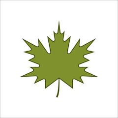 Maple Leaf sign flat icon on background