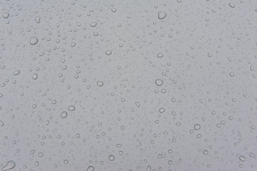 drops of water-repellent surface in black & white