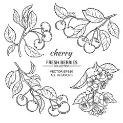 cherry sketch set