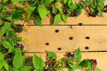 black raspberry with berries and leaves on the wooden