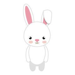 rabbit animal character cute bunny cartoon. vector illustration