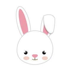 rabbit animal character cute bunny cartoon. vector illustration