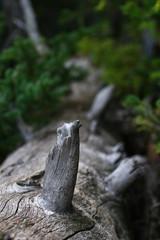 Lake Louis, Banff