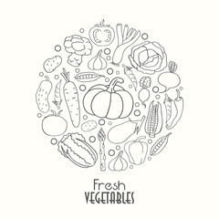 Stylish vegetables in a circle