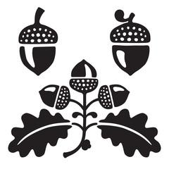 Black and white stylized illustration of oak leaves and acorns. Isolated on white background.