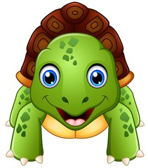 Funny cartoon  turtle