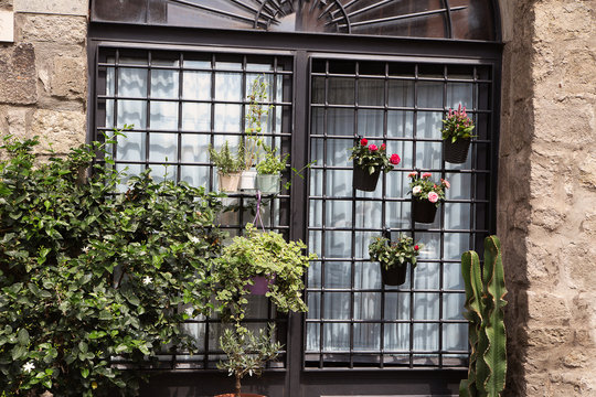 flower pot in a window with bars