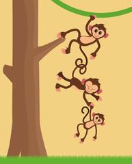flat design happy playful  jungle monkeys hanging cartoon vector illustration