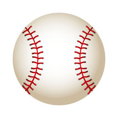 ball baseball equipment isolated icon vector illustration design