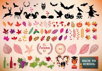 Autumn icon set, vector design elements