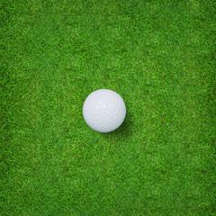 White golf ball on green grass of golf course.