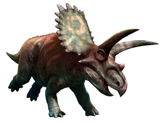 Wall Mural - Coahuilaceratops
