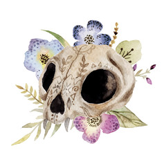 Watercolor  vector boho illustration with skull