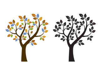 Color and Black Tree. Vector Illustration. Nature and Garden