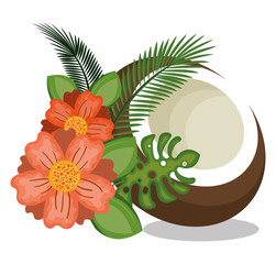 icon coconut design vector illustration eps 10