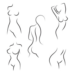 Nude woman silhouettes vector
