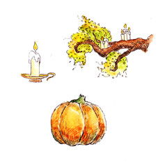 Fall elements. Hand drawn objects. Autumn things.