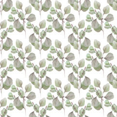 watercolor illustration eucalyptus pattern