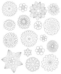 hand drawn flowers for coloring pages for adults, a collection of different flowers , Outline vector illustration