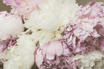 Vintage concept with Peonies. Filtered image with pastel colored flowers in retro style.
