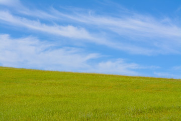 Cloudy blue sky and green grass hill