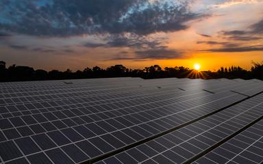 Solar panels, solar farm with colorful sunrise sky