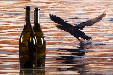 Two bottles from red wine and cormorant flying over the river