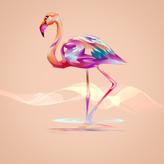 flamingo on an orange background