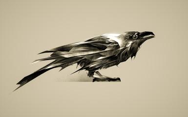 vintage raven