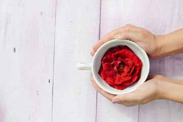 Top view on woman hands holding cup with rose flower, wooden table background